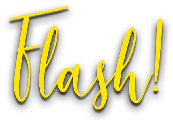 Flash - der Blitz-Workshop mit Heiko und Rossi * Kreative Blitzfotografie für Hochzeitsfotografen