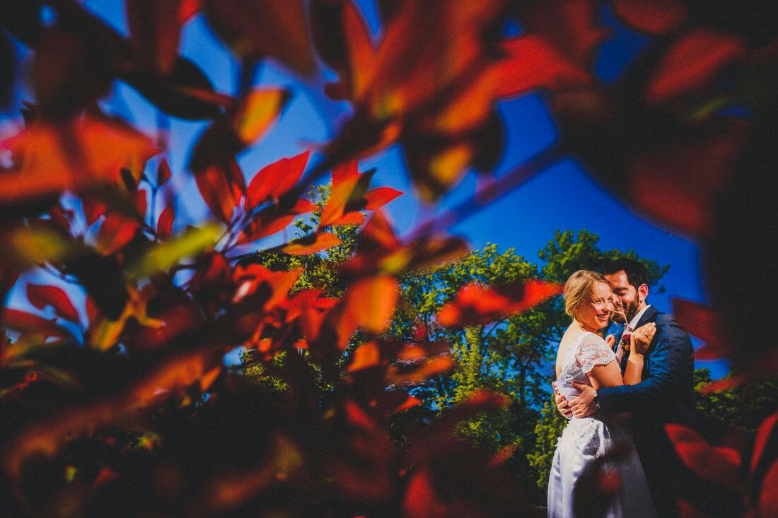 hochzeitspaar-portraet, eingerahmt zwischen roten blaettern eines buschs, die vom sonnenlicht illuminiert sind - erfahrungsberichte glücklicher hochzeitspaare